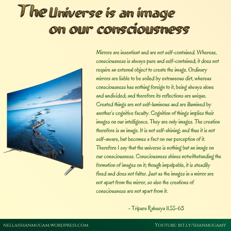 consciousness and mirror