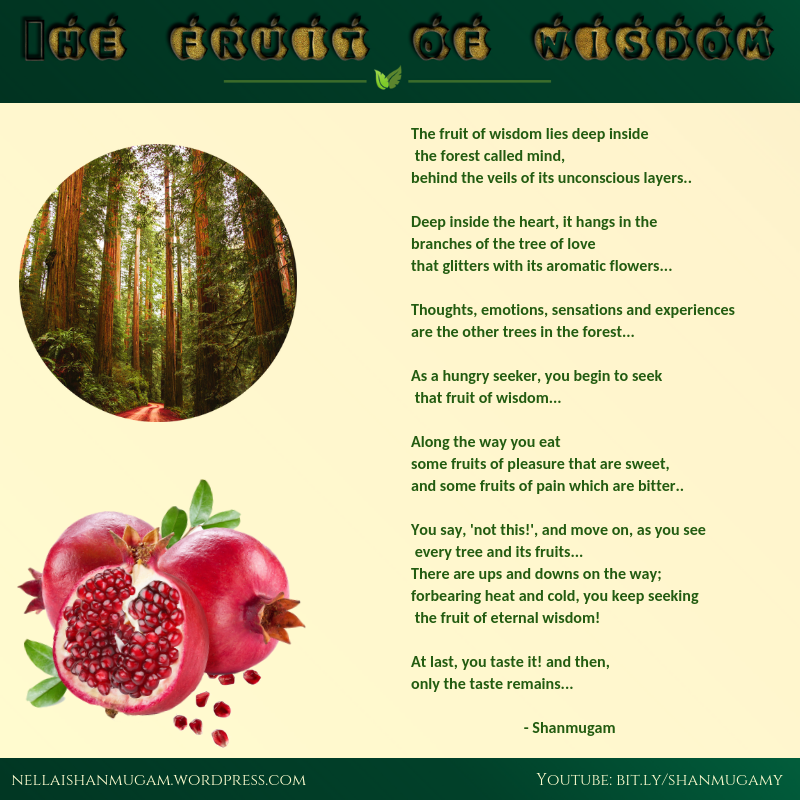 fruit of wisdom.png