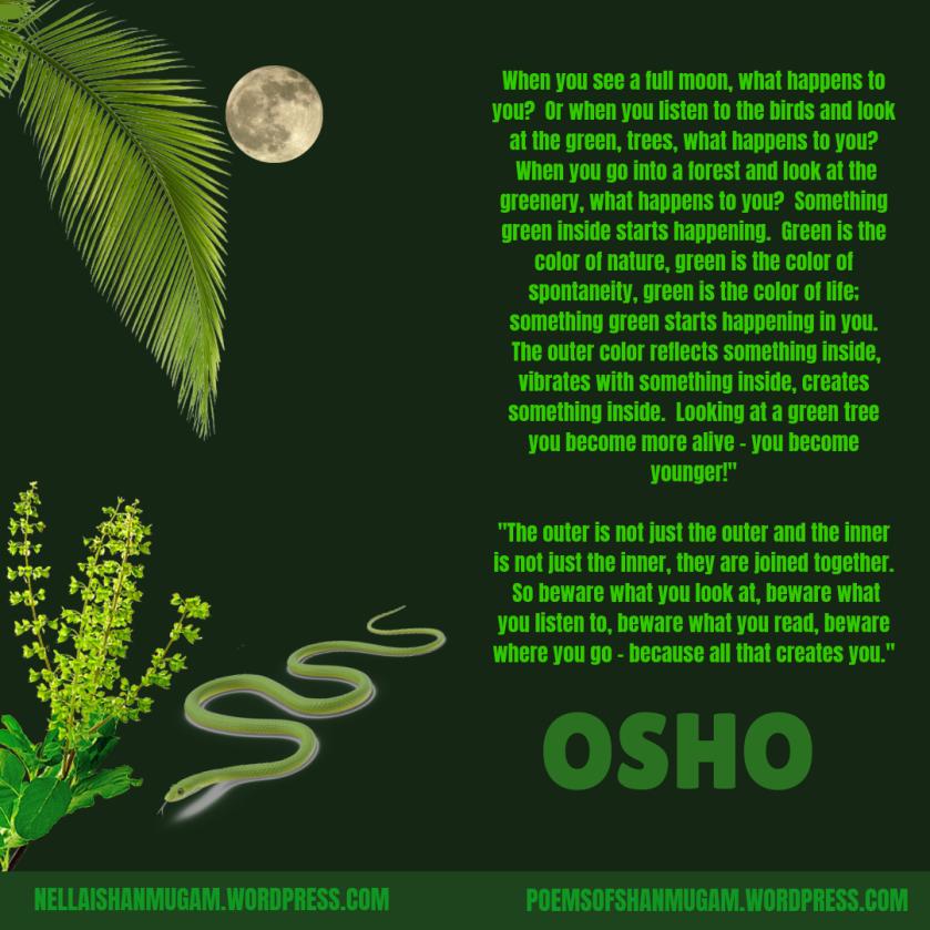 green-osho