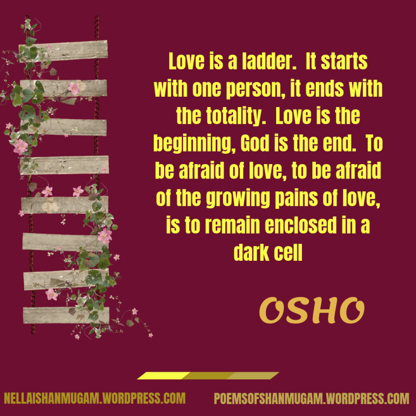 Love is a ladder. It starts with one person, it ends with the totality. Love is the beginning, God is the end. To be afraid of love, to be afraid of the growing pains of love, is to re